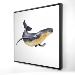 Framed 24 x 24 - 3D - Watercolor blue whale