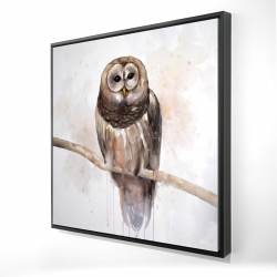 Framed 24 x 24 - 3D - Barred owl