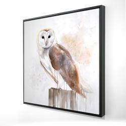 Framed 24 x 24 - 3D - Barn owl