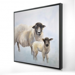 Framed 24 x 24 - 3D - Sheep and its baby