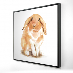 Framed 24 x 24 - 3D - Lop-rabbit