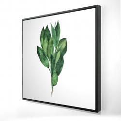 Framed 24 x 24 - 3D - Bay leaves bundle