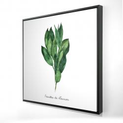 Framed 24 x 24 - 3D -  bay leaves bundle - fr