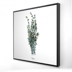 Framed 24 x 24 - 3D - Thyme leaves bundle - fr