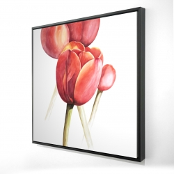 Framed 24 x 24 - 3D - Blossoming tulips closeup