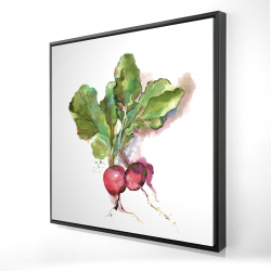 Framed 24 x 24 - 3D - Watercolor radish