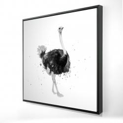 Framed 24 x 24 - 3D - Proud ostrich