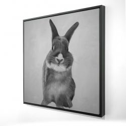Framed 24 x 24 - 3D - Funny gray rabbit
