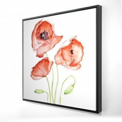 Framed 24 x 24 - 3D - Watercolor poppies