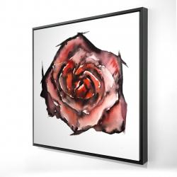 Framed 24 x 24 - 3D - Watercolor rose