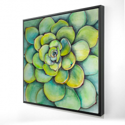 Framed 36 x 36 - 3D - Watercolor succulent plant