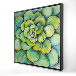 Framed 24 x 24 - 3D - Watercolor succulent plant