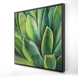 Framed 24 x 24 - 3D - Watercolor agave plant