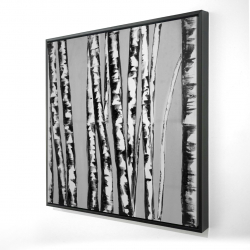 Framed 24 x 24 - 3D - Birches intersecting
