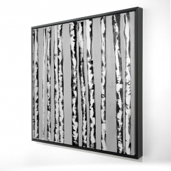 Framed 48 x 48 - 3D - Birches black and white