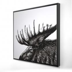 Framed 24 x 24 - 3D - Moose plume