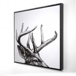 Framed 24 x 24 - 3D - Roe deer plume
