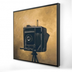 Framed 24 x 24 - 3D - Vintage camera