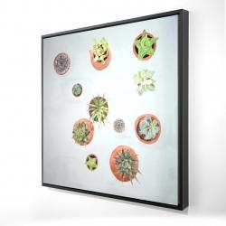 Framed 24 x 24 - 3D - Cactus plants