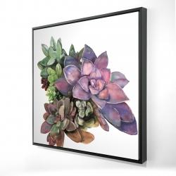Framed 24 x 24 - 3D - Succulent plant