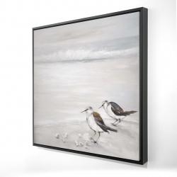 Framed 24 x 24 - 3D - Two sandpipiers birds