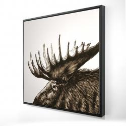 Framed 24 x 24 - 3D - Moose plume sepia