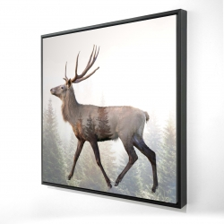 Framed 24 x 24 - 3D - Large plume roe deer