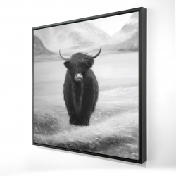Framed 24 x 24 - 3D - Monochrome highland cow