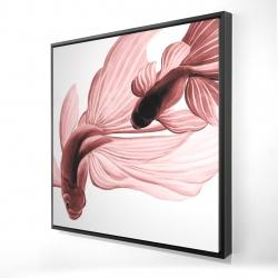 Framed 24 x 24 - 3D - Red betta fish