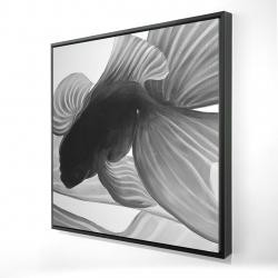 Framed 24 x 24 - 3D - Monochrome two betta