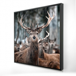 Framed 24 x 24 - 3D - Stags