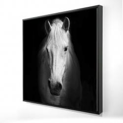 Framed 24 x 24 - 3D - Monochrome horse