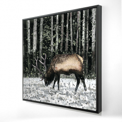 Framed 24 x 24 - 3D - Caribou in the forest