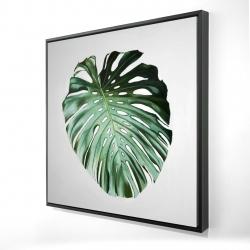 Framed 24 x 24 - 3D - Monstera leaf
