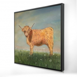 Framed 24 x 24 - 3D - Daisy the highland cow