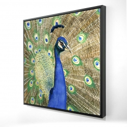Framed 24 x 24 - 3D - Peacock