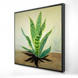 Framed 24 x 24 - 3D - Succulent plant mother-in-law's tongue
