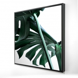 Framed 24 x 24 - 3D - Monstera deliciosa