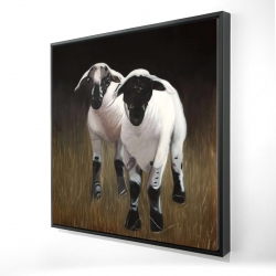 Framed 24 x 24 - 3D - Two lambs