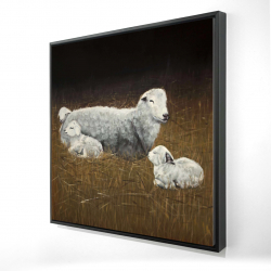 Framed 36 x 36 - 3D - Sheep and lambs