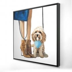 Framed 24 x 24 - 3D - Fashionable cavoodle dog