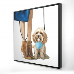Framed 24 x 24 - 3D - Fashionable cavoodle dog