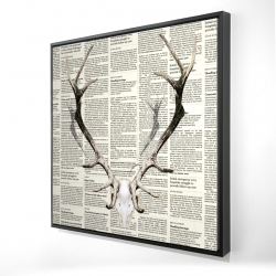Framed 24 x 24 - 3D - Deer horns on newspaper
