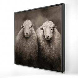 Framed 24 x 24 - 3D - Sheep sepia