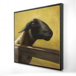 Framed 24 x 24 - 3D - Young ram