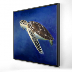 Framed 24 x 24 - 3D - Beautiful sea turtle