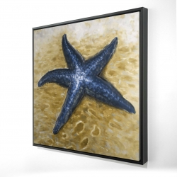 Framed 24 x 24 - 3D - Beautiful starfish