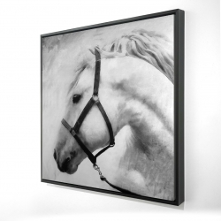 Framed 24 x 24 - 3D - Darius the horse