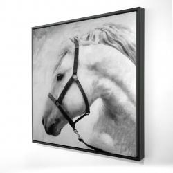 Framed 24 x 24 - 3D - Darius the horse