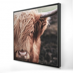 Framed 24 x 24 - 3D - Desaturated highland cow